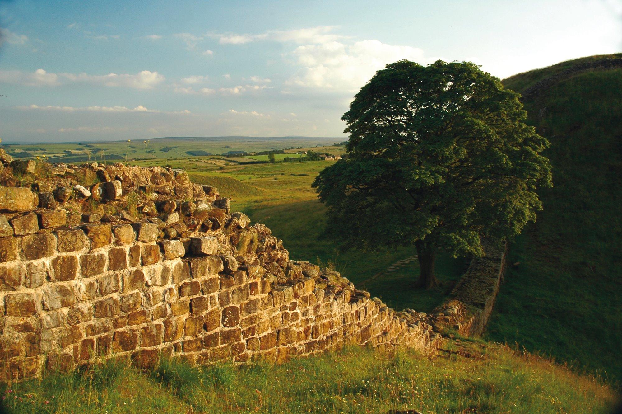Hadrian's Wall Landscape
